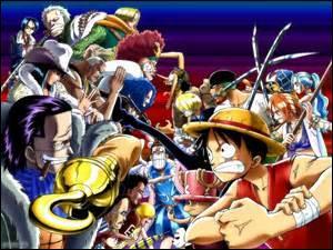 Parmi ces personnages, lequel est le docteur de l'équipage de pirates du Chapeau de paille ?