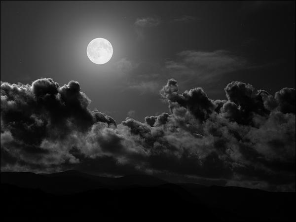 Quelles créatures sommes-nous conduits à rencontrer durant les nuits de pleine lune. Elles passent de la forme humaine à la forme animale et en tirent leur force.