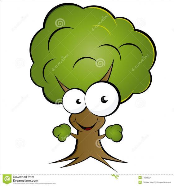 Quizz les arbres font des jeux de mots quiz jeux - Jeux de tronconneuse qui coupe les arbres ...