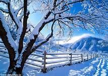 C'est l'hiver, il neige !