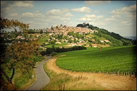 Dans quel vignoble faites-vous les vendanges si vous vous trouvez sur l'aire d'appellation couvrant les communes de Bannay, Bué, Crézancy, Menetou-Ratel, Ménétréol, Montigny, St-Satur, Ste-Gemme, Sury-en-vaux, Thauvenay ?