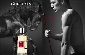 Quel est ce parfum de Guerlain ?