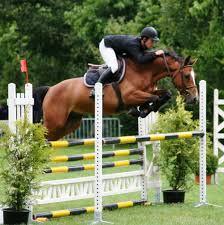 Le saut d'obstacles à cheval