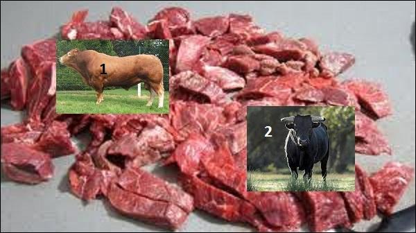 Si vous faites une préparation selon la tradition, quelle viande, venant des départements de l'Hérault, du Gard ou des Bouches-du-Rhône, mettrez-vous ?