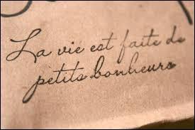 """Le mot latin """"vita"""" a donné ------------."""
