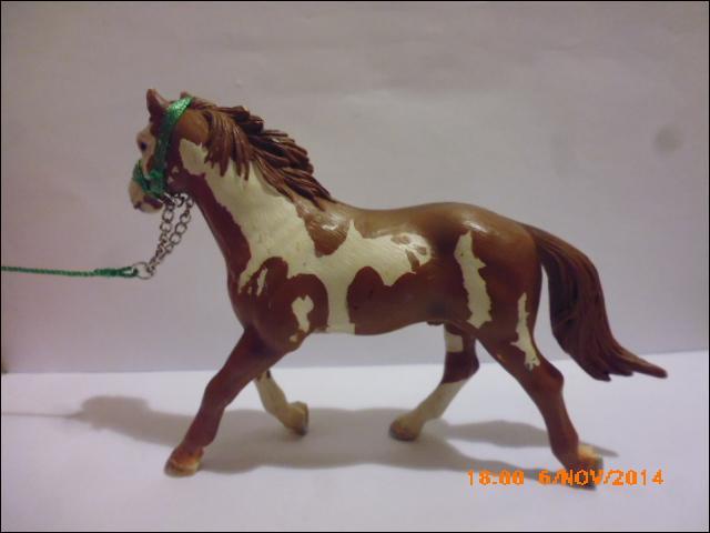 Combien existe-t-il de races de chevaux et poneys ?