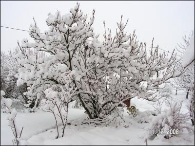 """Dans ce livre-album intitulé """"L'hiver"""", l'auteur nous conte ses impressions d'hiver et les souvenirs de son enfance. Il aurait pu reprendre la phrase de Gilles Vigneault """"Mon pays, ce n'est pas un pays, c'est l'hiver"""". Qui est cet écrivain connu pour son roman """"Malataverne"""" ?"""