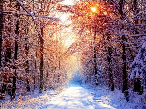 """""""L'hiver blanchit le dur chemin / La bise mord ta douce main"""" : extrait du poème """"Il fait froid"""" de..., connu pour """"Les Misérables"""", """"Les Contemplations"""", """"Les Châtiments""""."""