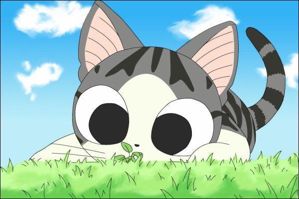 Quizz chi une vie de chat quiz dessin anime japonais - Dessin de chi ...