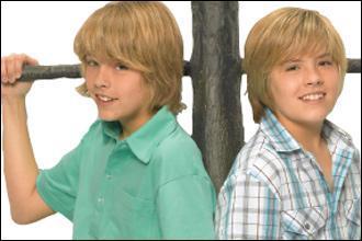 Zack et Cody sont :