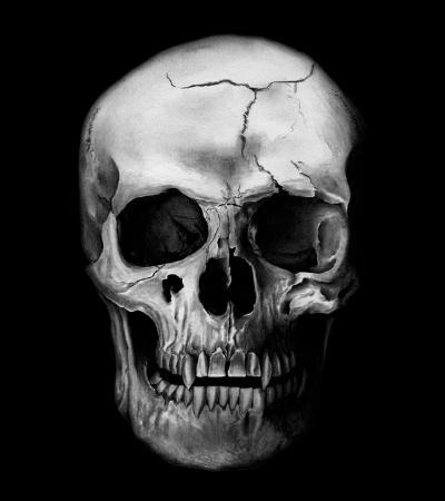 « Percy secouait son frère, Ron agenouillé à côté d'eux, mais les yeux de --- regardaient sans voir, le fantôme de son dernier rire toujours gravé sur son visage. »