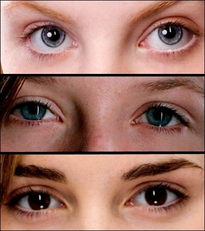 Quelle paire d'yeux arrive à voir les animaux qui tractent les diligence de Poudlard ?