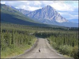 Comment se nomme la route qui relie la ville de Fairbanks aux champs pétroliers du nord de l'Alaska ?