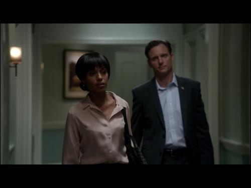 Comment Fitz et Olivia se sont-ils rencontrés ?