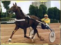 Ourasi était un cheval de course de galop et Jappeloup était un cheval de course de trot.