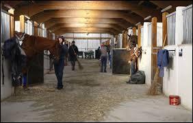 Les jeunes chevaux peuvent rejoindre les écuries des entraîneurs dès l'âge de 2 ans.