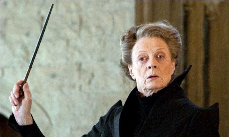 Grâce à quel professeur Harry a-t-il atteint l'équipe de Quidditch de sa maison ?