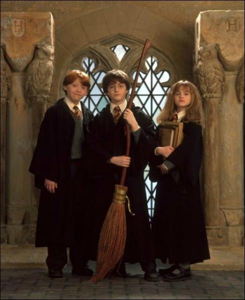 Où a-t-elle rencontré Harry et Ronald pour la première fois ?