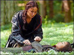 """Complétez la berceuse chantée par Katniss à Prim et Rue : """"Sous le grand sol, au fond de la prairie ..."""""""