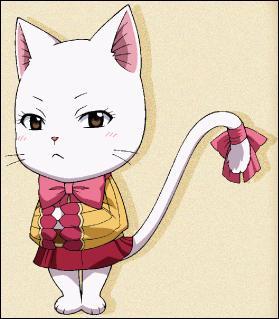 Comment s'appelle cette chatte en japonais ?
