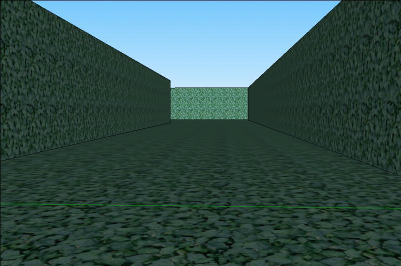 Nous sommes entrés dans le labyrinthe. Voilà qu'un long couloir inquiétant se dresse devant nous...Il mesure cinq mètres de large et quinze mètres de long. Comment allons-nous donc faire pour calculer son aire ?La réponse trouvée, c'est à vous d'avancer...