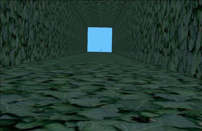 Nous chutons dans une trappe ! L'herbe a amorti notre chute, nous allons devoir escalader le mur pour remonter.Sachant qu'il mesure 6 mètres de haut et qu'escalader 1 mètre nous prend 1 minute, en combien de temps serons-nous remontés si nous faisons un pause de 30 secondes tous les deux mètres ?