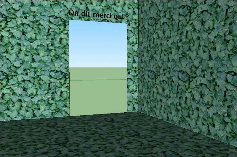 Voici la sortie ! Avant de se quitter, une dernière énigme. Le labyrinthe est de forme carrée, a 6, 65 km de côté. Combien mesure son périmètre ?