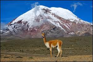 Quel est le sommet le plus éloigné du centre de la Terre ?