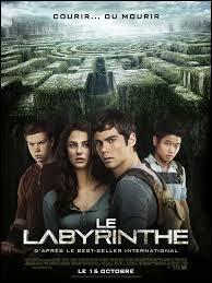 """Dans """"Le labyrinthe"""", comment appellent-ils leur refuge ?"""