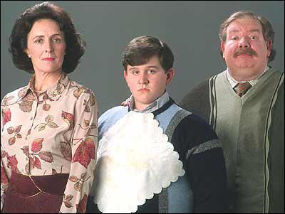 Où vont Harry et les Dursley pour l'anniversaire de Dudley ?