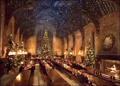 Que contient le paquet apporté par un hibou à Harry dans la Grande Salle ?