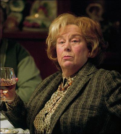 Pendant le dîner chez les Dursley, tante Marge donne à son chien :