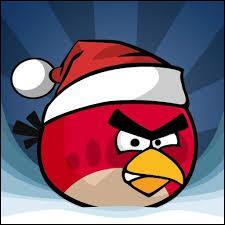 Même quand ils fêtent Noël, les Birds sont toujours...