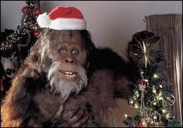 Où Harry devrait-il passer les fêtes de fin d'année ?