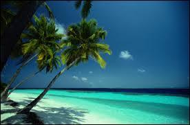 Dans quel océan se situe l'île française de la Réunion ?
