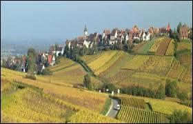 Nous partons à la découverte de Zellenberg, à 2 kilomètres de Riquewihr. Village établi sur une colline en plein milieu du vignoble alsacien, il se situe dans le département ...