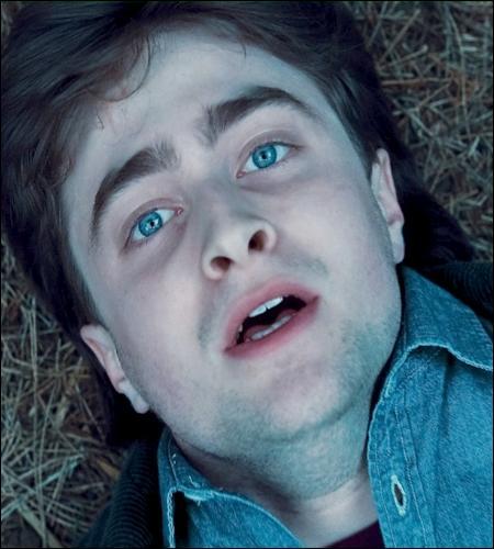 « Je n'ai le souvenir d'aucune nourriture, du chant de l'eau, de la caresse de l'herbe. Je suis… je suis nu dans les ténèbres ! Il n'y a aucun voile entre moi et la roue de feu… J'arrive à le voir… de mes yeux éveillés ! »