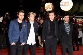 Pourquoi Louis n'était pas là aux NRJ music awards 2014 ?