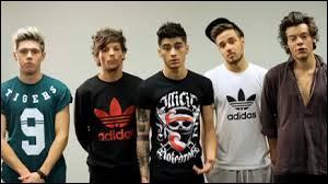 Comment s'appelle la prochaine tournée des One Direction ?