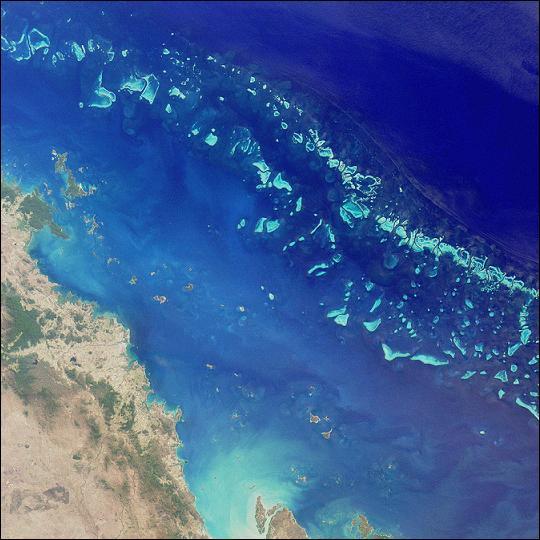 """De la Grande Barrière de corail : """"Happy Christmas ! """". Où se situe ce récif ?"""