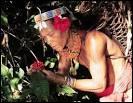 """Où vivent les Mentawai, ces """"hommes-fleurs"""" à la tête ornée de fleurs d'hibiscus et au corps tatoué ?"""