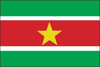 Je suis le drapeau...
