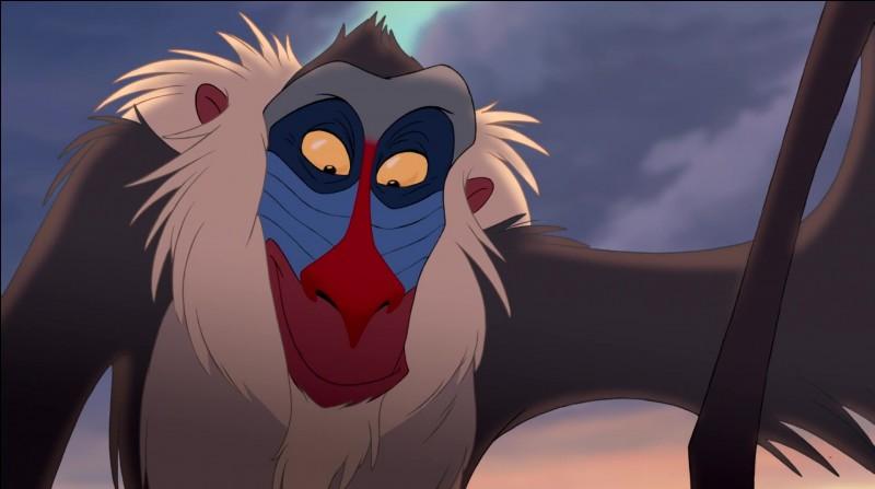 Qui est ce singe ?