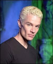 Dans quelle série apparaît Spike ?