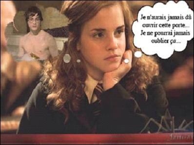 Qu'est-ce que Hermione Granger a vu à la salle de bain ?