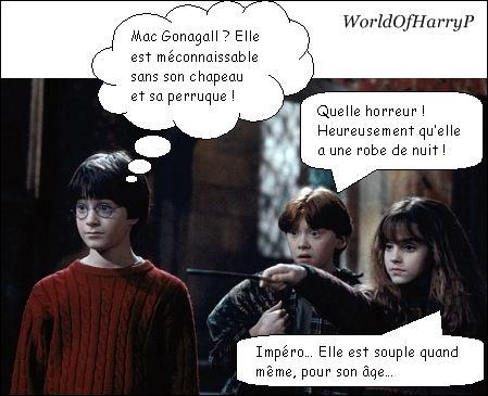 Qu'est-ce que Hermione, Ronald et Harry ont vu ?