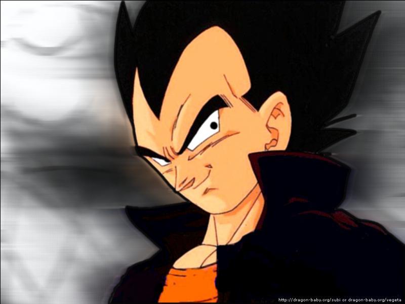 Mari de Bulma et père de Bra et Trunks, je suis un Saiyan qui considère Son Goku comme mon rival. Qui suis-je ?