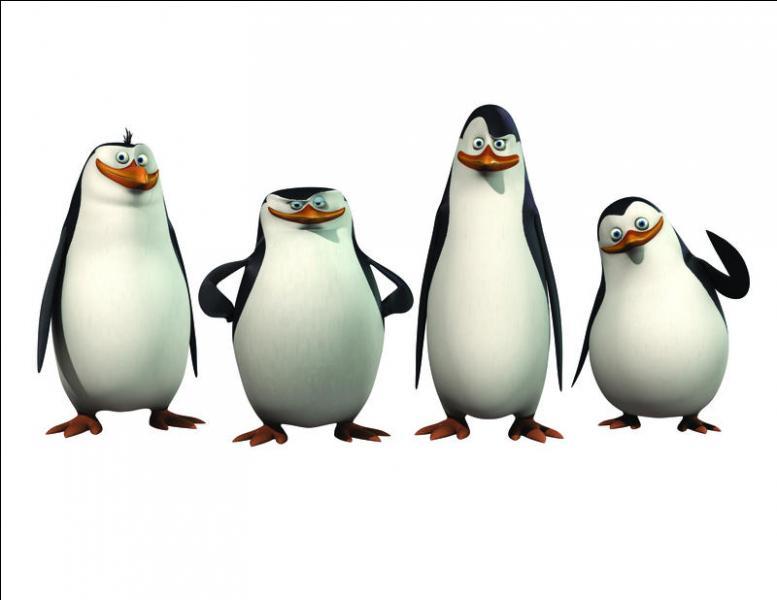 """Un film sorti récemment au cinéma porte le nom de : """"Les Pingouins de …"""" (Complète)"""