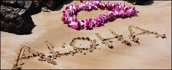 Dans quel océan se situe l'archipel d'Hawaï ?