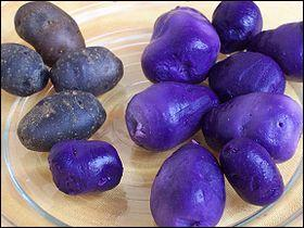 73 - Quels sont ces légumes ?